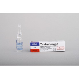 Testosterone Enanthate Bayer